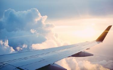 癒しの飛行機